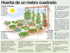 how-to-jardín de casa ocupante-just-1-M2-1