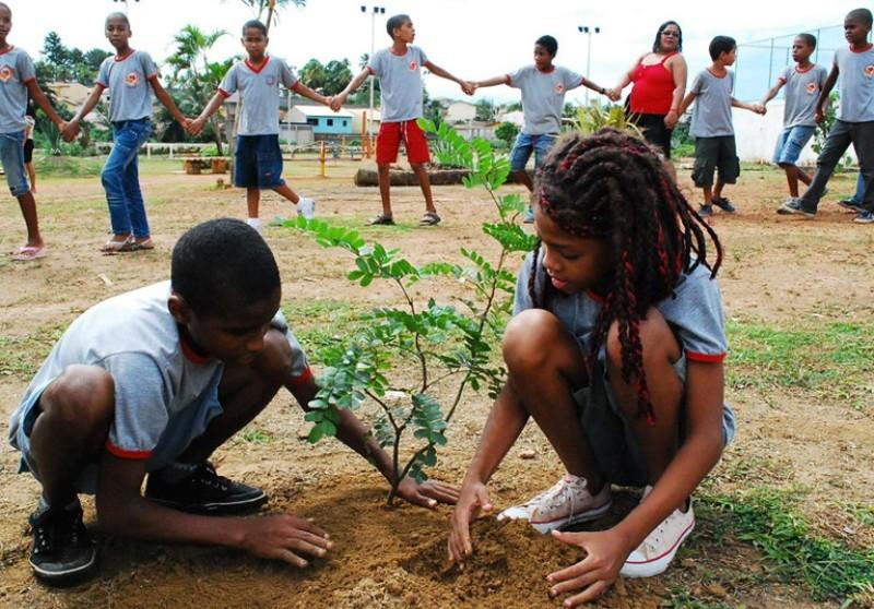 Suficiente Educação ambiental pode virar disciplina obrigatória nas escolas  ZC07