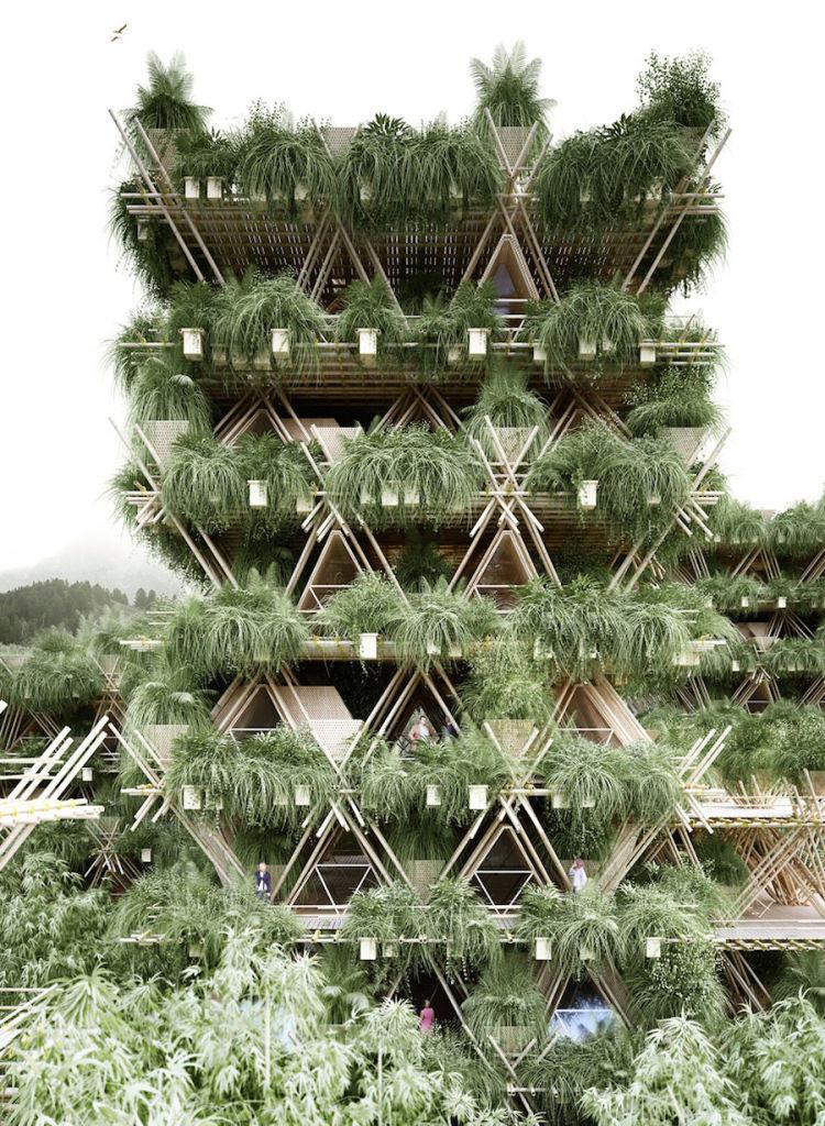 projeto-cidade-bambu-deve-abrigar-ate-20-mil-pessoas_02