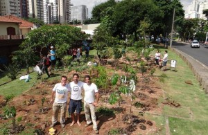 moradores-são-paulo-unem-criar-minifloresta-urbana-cidade-2