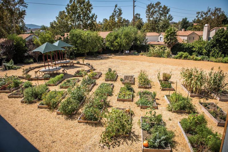 Escola-California-merenda-vegana-considerada-melhor-restaurante-verde-mundo