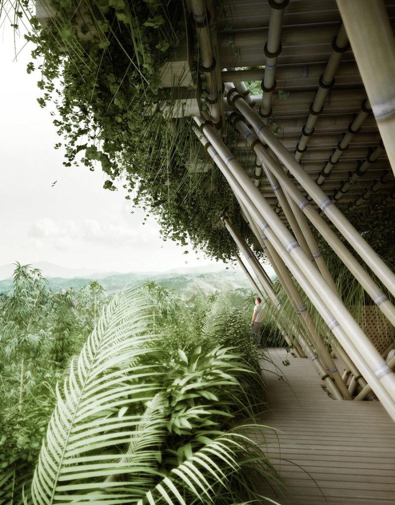 projeto-cidade-bambu-deve-abrigar-ate-20-mil-pessoas_01